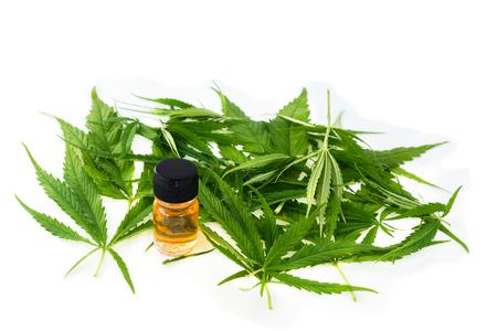 marijuana green leaf, cannabis CSB oil hemp extracts in jars,