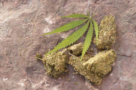 Dry Cannabis, Marijuanna leaf on rock 写真素材 - 136726026