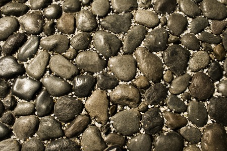 smooth stones: background smooth stones with petals of apple Stock Photo