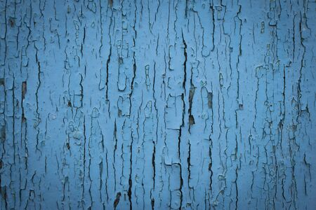 wood surface: Surface of old wood Paint over with white and blue