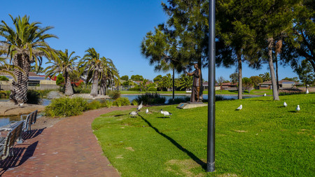 democracia: park with beautiful trees on the bank of the channel south of Adelaide in Australia in January 2017. Mural Foto de archivo