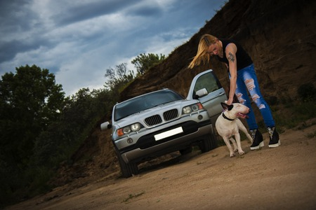 brutal: Brutal, daring girl with a fighting dog breed of bull terrier, near his car against the background of the cliff in the evening