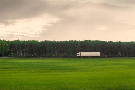 truck: White truck on a background of bright green grass and a gray sky