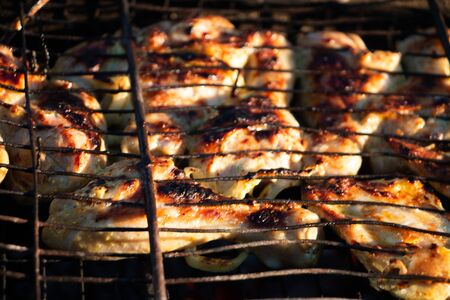 old BBQ grill meat bird in the campaign Stok Fotoğraf