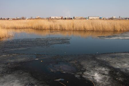 Spring landscape of the lake with dry reeds and melting ice 2020