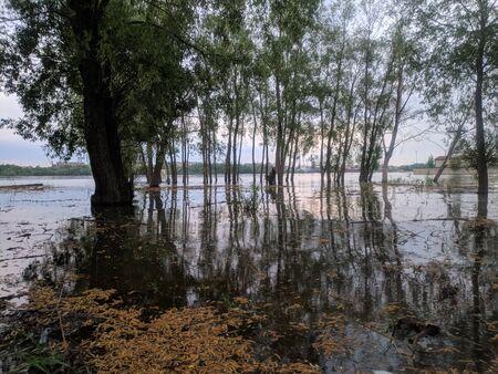 morning landscape of the Siberian river Irtysh in Omsk