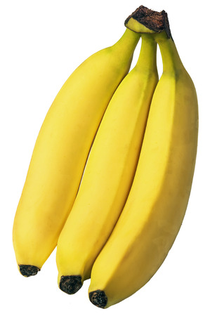 banana: three ripe natural banana isolated on white background