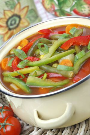 Diet vegetable soup Stock Photo - 7574093