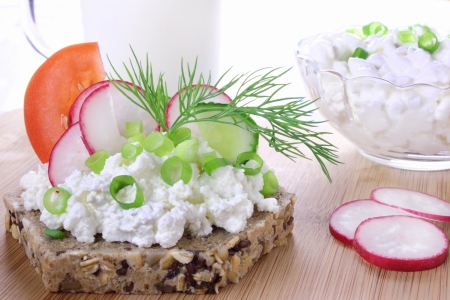 Sandwich with cottage cheese, cucumber,radish and tomato