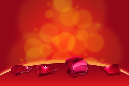 Red rose on bokeh background  photo