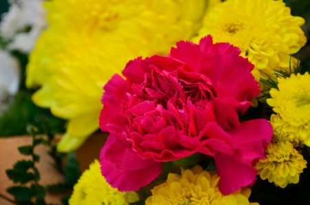favorite colour: A beautiful flowers in a vase  pink  carnations   yellow chrysanthemum close up