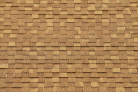 The Texture of Roof