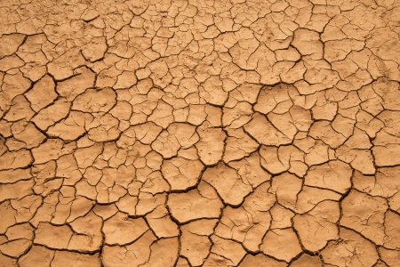 grooves: Pattern background of dry cracked ground