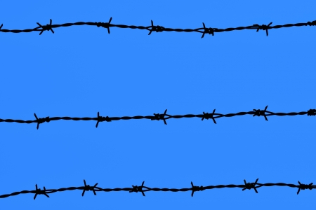 twiddle: Abstract background of barbed wire tied into long strips on the sky Stock Photo