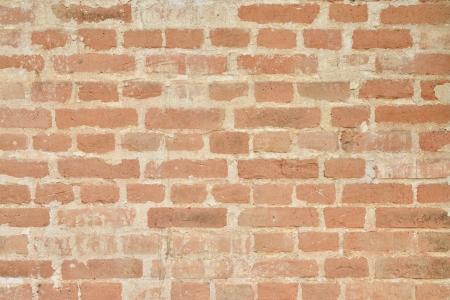 disintegration: Pattern background of old plaster wall disintegration