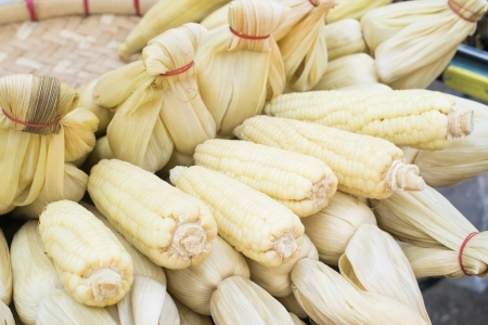 waxy: Boiled Waxy Corns  Stock Photo