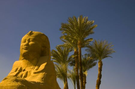 Sphinx in front of palm trees in Egypt Reklamní fotografie