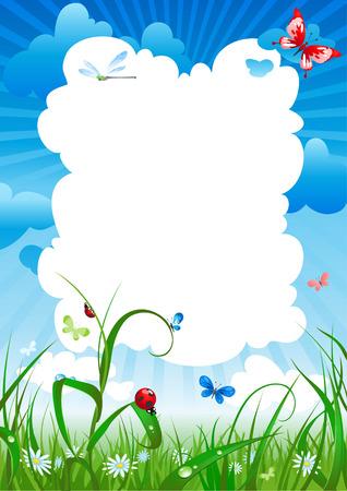 summer meadow: summer meadow background