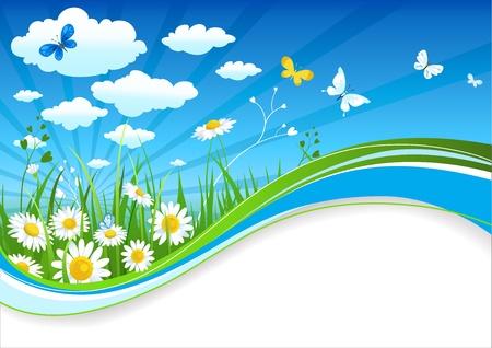 prato e cielo: Chamomiles e nuvole estate banner con spazio per il testo