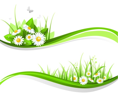 Natiral floral design Stock Vector - 9267176