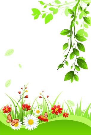 flora: Summer background with space for text