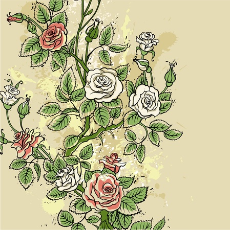 Grunge roses background Vector