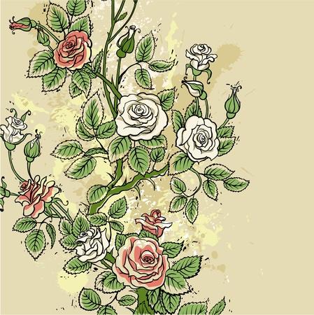 Grunge roses background Vector