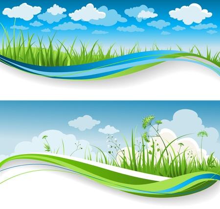 illustration herbe: Banni�res de gazon estivales