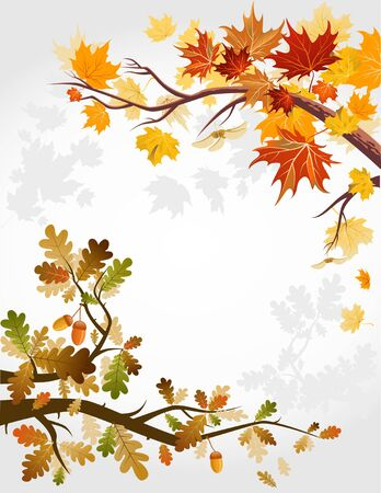 Autumn forest Stock Vector - 9580920