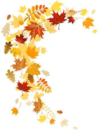 autumn leaf frame: Hojas de oto�ales remolinos con espacio para texto