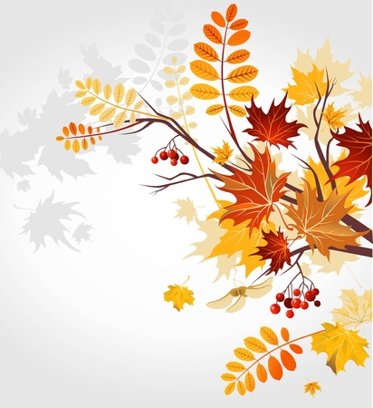 Autumn background Stock Vector - 9813468
