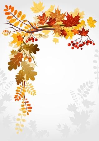 autumn leaf frame: Marco de oto�o con espacio para texto
