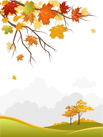 red maples: Autumn scenery  Illustration