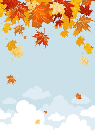 autumn background: Maple leaves