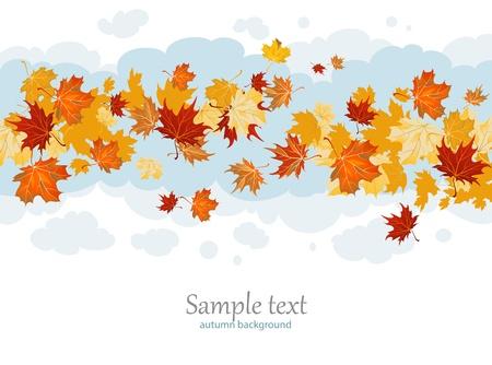 Maple leaves Stock Vector - 10102004