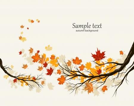 dode bladeren: Herfst