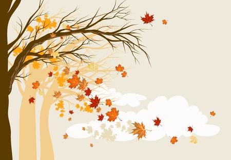 arboles secos: Fondo de otoño