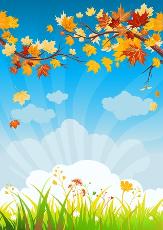 ciel rouge: Les feuilles d'automne et de l'herbe avec un espace pour le texte