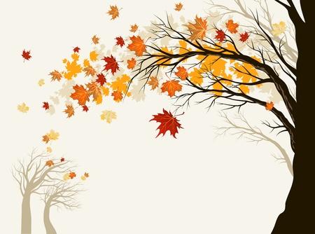 toter baum: Herbst Baum