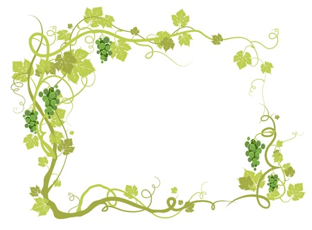 vine leaf: Green vineyard frame with space for text