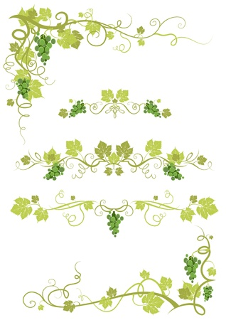 grapes on vine: Vineyard design and corners Illustration