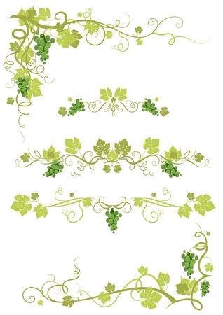 Vineyard Design und Ecken Vektorgrafik