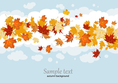 Maple leaves background with space for text Vector