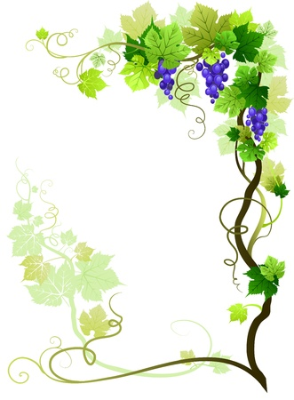 viticulture: Vineyard frame with space for text