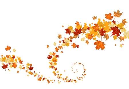 Remolino de hojas Ilustración de vector