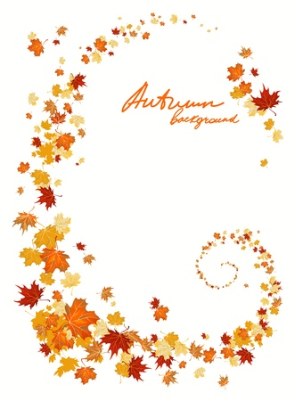 autumn background: Autumn leaves background with space for text   Illustration