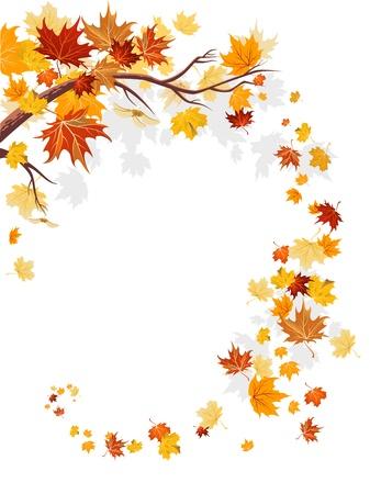 autumn leaf frame: Arce deja remolino con espacio para texto   Vectores