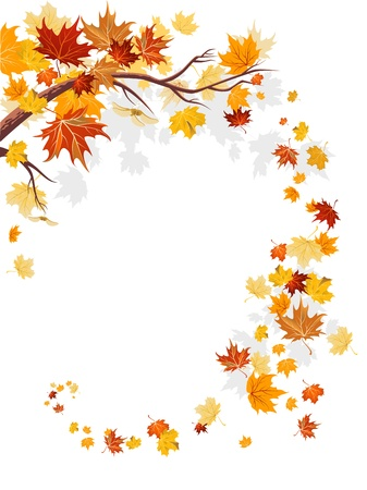 Maple leaves swirl with space for text   Vector