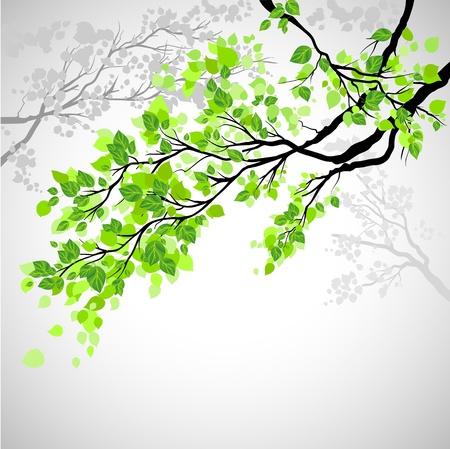grün: Zweig mit Blättern