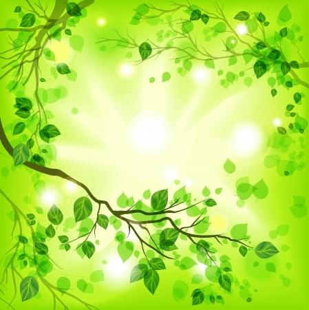 příroda: Jarní světlé pozadí Ilustrace